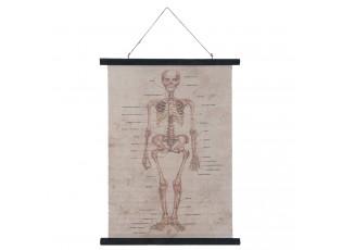 Nástěnná mapa lidské tělo - 55*2*75 cm