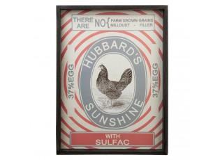 Obraz Hubbards Sunshine - 42*3*58 cm