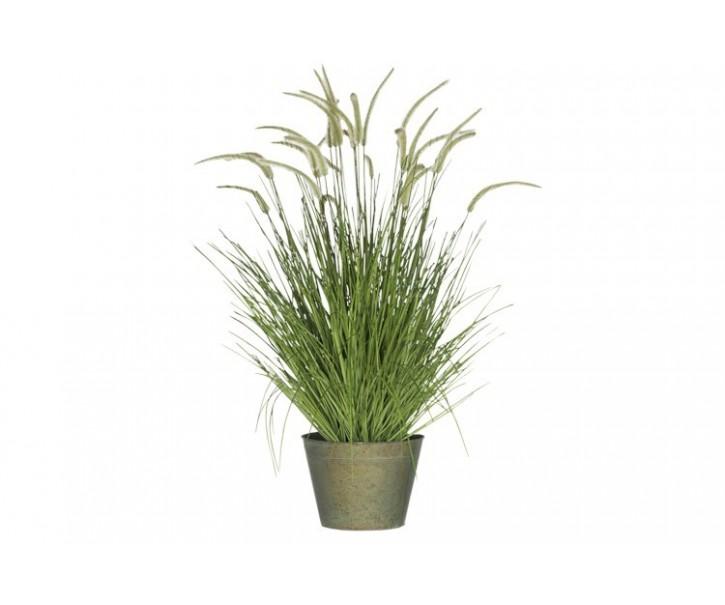 Okrasná tráva v květináči - Ø60*114cm