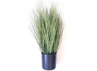 Okrasná tráva v květináči - Ø12*55cm