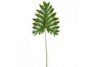 Okrasný list Philodendron - 34*80cm