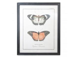 Nástěnný obraz motýli - 65*2*80 cm