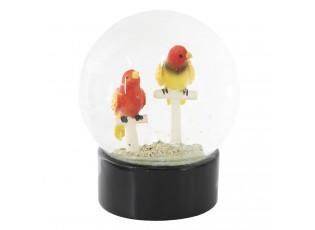 Sněžítko s papoušky - Ø 10*13 cm