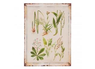 Nástěnná dřevěná cedule Herbs - 30*1*40 cm