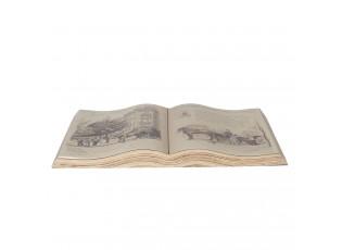 Dekorační obraz otevřená kniha Paris - 48*28 cm