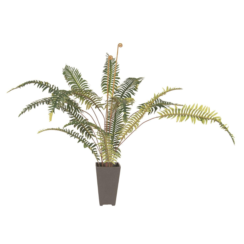 Dekorace pokojové rostliny kapradí - 58*60*86 cm