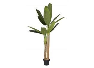 Dekorace pokojové rostliny Banánovník - 180 cm