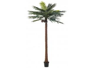 Okrasná palma v květináči Palm - Ø190*350cm