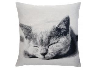 Povlak na polštář REAL ANIMALS kočka - 60*60 cm