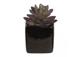 Dekorace sukulentní rostlina v květináčku - 34 cm