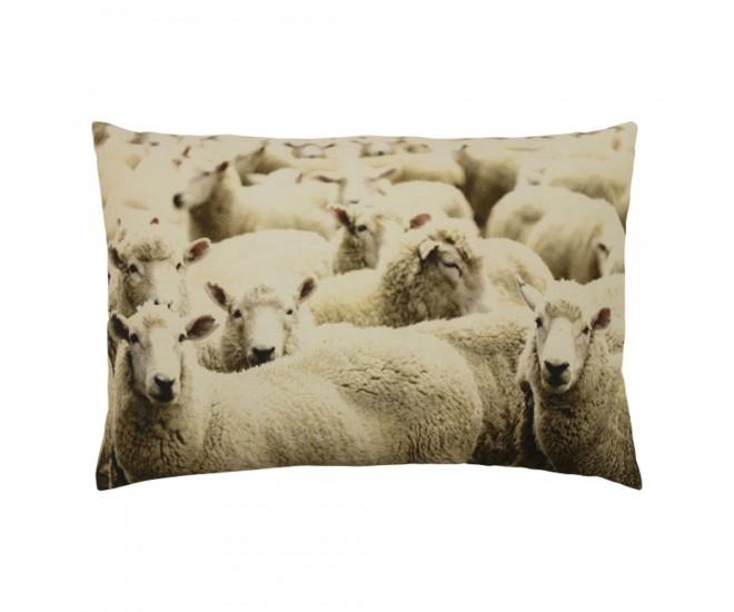 Bavlněný polštář Ovce 40x60 cm - 60*10*40cm