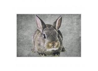 Šedá rohožka s králíkem Rabbi - 75*50*1cm