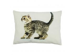 Plátěný polštář mourované kotě - 50*10*35cm