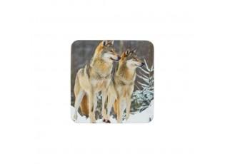 6ks pevné korkové podtácky s vlky  - 10*10*0,4cm