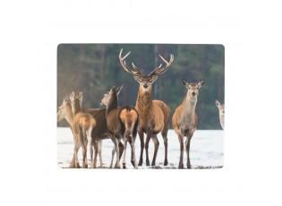 4ks pevné korkové prostírání s jelenem Deer winter - 30*40*0,4cm