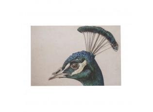 Sametový nástěnný panel s hlavou páva - 35*45*1cm